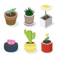 set di piante in vaso isometriche vettore