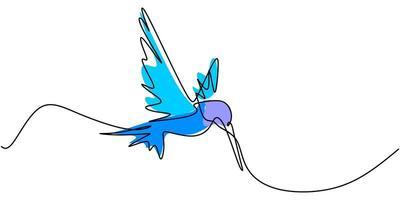 un disegno a tratteggio continuo di un simpatico colibrì. uccello tropicale di arte linea disegnata a mano. vettore