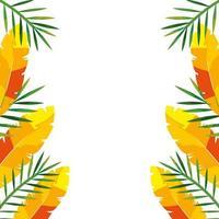 cornice con piume esotiche e foglie tropicali vettore