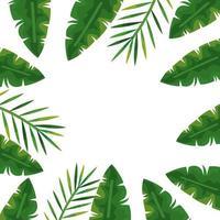 cornice dell'icona isolata di foglie naturali tropicali