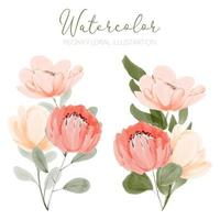 acquerello bella peonia composizione floreale illustrazione vettore