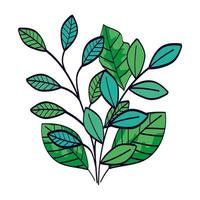 rami con foglie naturale icona isolata