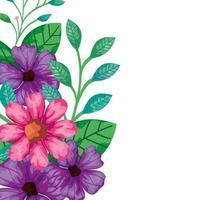 simpatici fiori rosa e viola con foglie