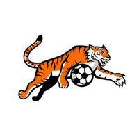 tigre che salta mascotte del pallone da calcio vettore