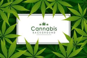sfondo verde erba foglia di cannabis vettore