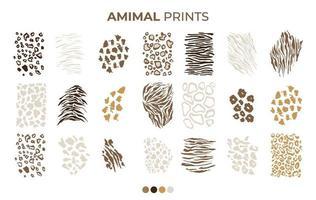 modelli di stampa pelle di tigre, leopardo, tigre, giaguaro vettore