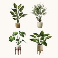 insieme dell'illustrazione della pianta disegnata a mano dell'acquerello vettore