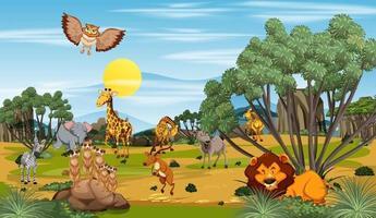 molti animali diversi nella scena della foresta vettore
