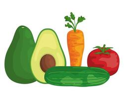 verdure fresche cibo sano icone vettore