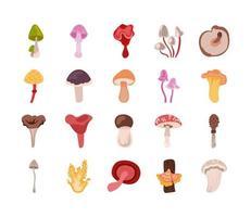 set di icone di funghi e funghi vettore