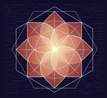 Illustrazione di fiore trasparente disegnato a mano di vettore