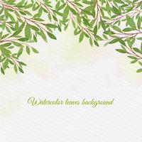 Vector sfondo acquerello con foglie disegnare a mano