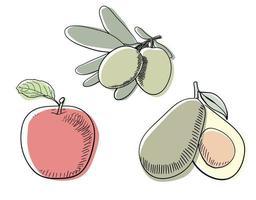 tre tipi di disegno al tratto di frutta colorata vettore