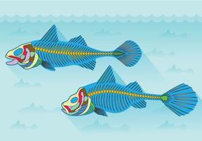 vettore di anatomia della lisca di pesce