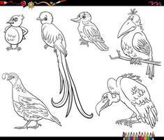 Cartoon uccelli animali personaggi impostati pagina del libro da colorare vettore