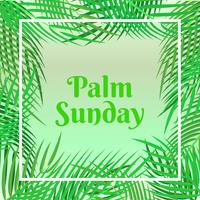 Scheda di festa della domenica delle palme con priorità bassa del bordo delle foglie di palma vettore