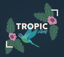 poster con cornice floreale rettangolare con vibrazioni tropicali e uccelli vettore