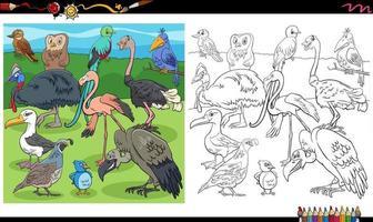 cartone animato uccelli animali caratteri gruppo libro da colorare pagina vettore
