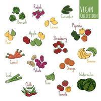 vettore di raccolta di verdure