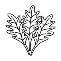 icona di rucola. Doodle disegnato a mano o icona stile contorno vettore