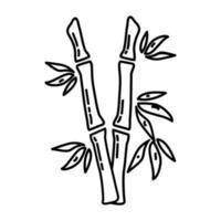 icona tropicale di bambù. Doodle disegnato a mano o icona stile contorno vettore
