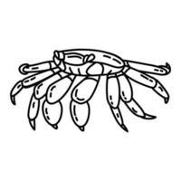 icona tropicale del granchio. Doodle disegnato a mano o icona stile contorno vettore