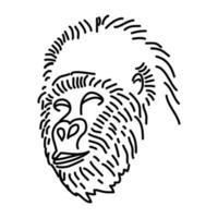 icona di gorilla. Doodle disegnato a mano o icona stile contorno vettore