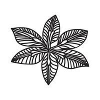 icona tropicale dell'orchidea. Doodle disegnato a mano o icona stile contorno