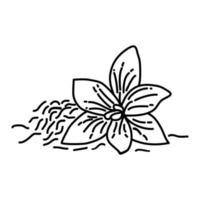 icona di zafferano. Doodle disegnato a mano o icona stile contorno vettore