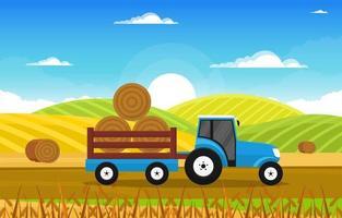 agricoltura campo di grano fattoria rurale natura scena paesaggio illustrazione vettore