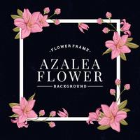 Sfondo di fiori di azalea
