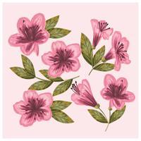 Vettore disegnato a mano fiori di azalea