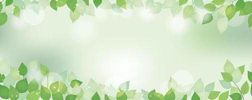 sfondo verde fresco acquerello senza soluzione di continuità con lo spazio del testo, illustrazione vettoriale. immagine rispettosa dell'ambiente con piante e luce solare. ripetibile orizzontalmente. vettore