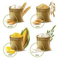 set di cereali agricoli vettore