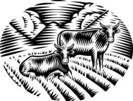 un'illustrazione vettoriale in bianco e nero di mucche sull'erba in stile incisione