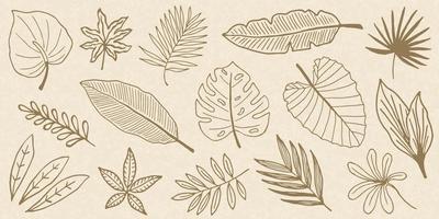 raccolta di doodle di foglie tropicali vettore