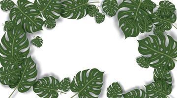 sfondo vettoriale di foglie verdi. spazio di confine di foglie verdi per il testo.