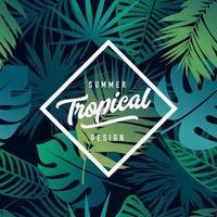 vettore di design banner tropicale