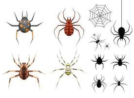 insieme dell'illustrazione di progettazione di vettore del ragno isolato su fondo bianco