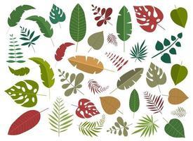 Insieme dell'illustrazione di progettazione di vettore delle foglie tropicali isolato su fondo bianco