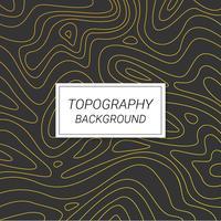 Vettore di sfondo topografia