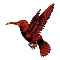 un'illustrazione vettoriale di un colibrì
