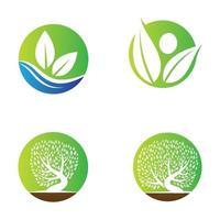 immagini del logo foglia