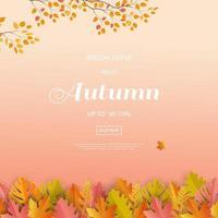 sfondo di vendita autunno o caduta con foglie colorate