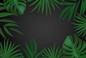 foglie di palma tropicali verdi realistiche naturali su sfondo nero