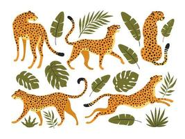 set vettoriale di leopardi o ghepardi e foglie tropicali. illustrazione alla moda.