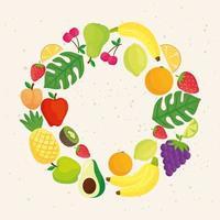 cornice rotonda di frutti tropicali vettore