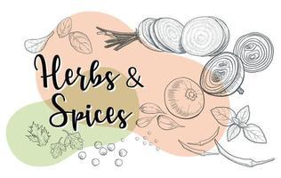 erbe e spezie naturali per preparare pasti sani vettore