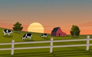vettore mucche al pascolo sul tramonto