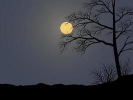 illustrazione di notte calma vettoriale